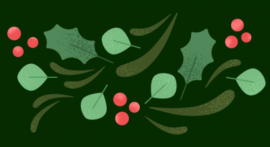 Colorful illustration of Holly leaves, and red berries